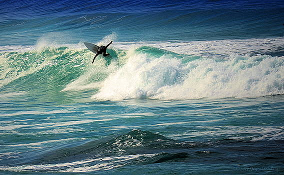 Surfing Asilomar Two by Joyce Dickens