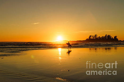 Surfs Up by Carrie Cole