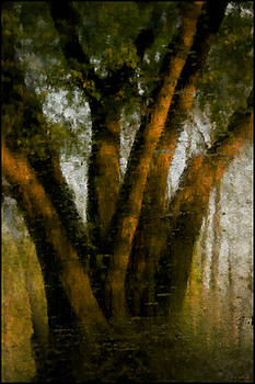Susquehanna Simpatico No 4 5 by Daniel G Walczyk