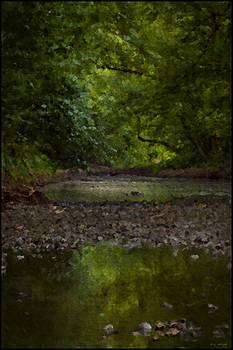 Susquehanna Simpatico No 9 40 by Daniel G Walczyk