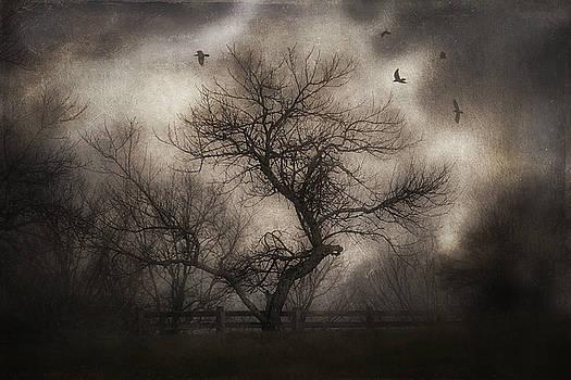Svetlana's Tree by Spokenin RED