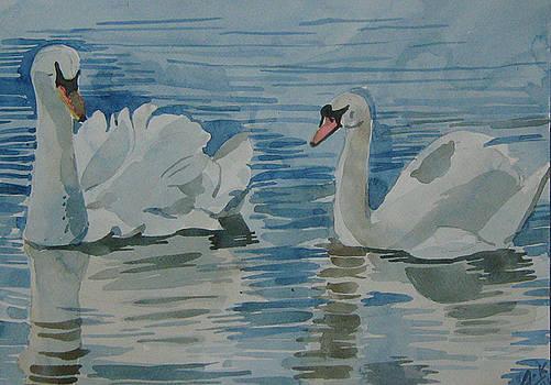 Swan by Akhilkrishna Jayanth