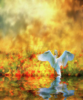 Swan Song At Sunset Thanks For The Good Day Lord by Diane Schuster