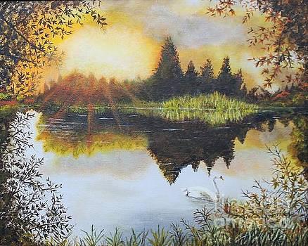 Swan Sunset by William Ohanlan