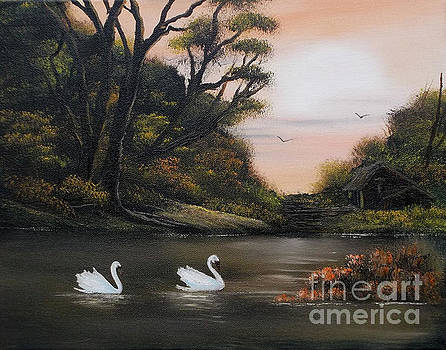 Swans at Dusk.For Sale by Cynthia Adams