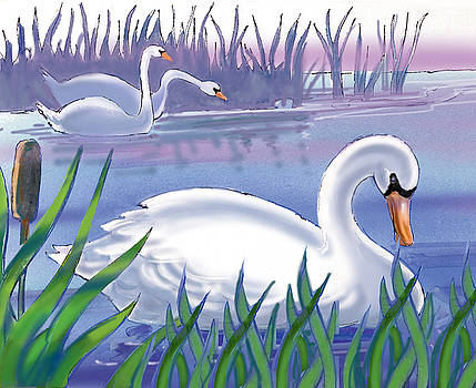 Swans by Valer Ian