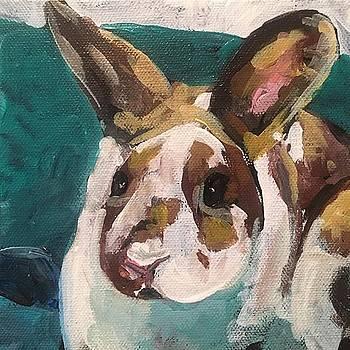 Sweet Bunny by Susan E Jones