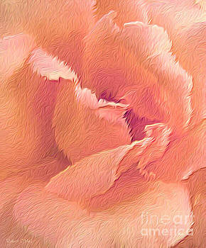 Sweet Coral Rose by Robert ONeil
