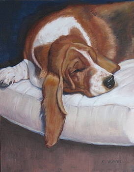 Sweet Dreams by Cynthia Vowell