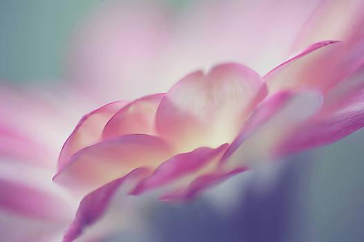 Jenny Rainbow - Sweet Memories