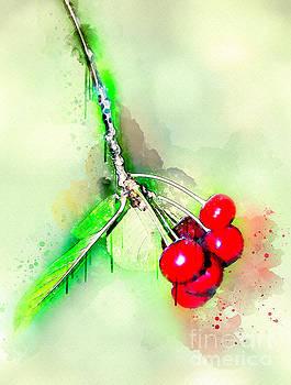Svetlana Sewell - Sweet Red Cherries