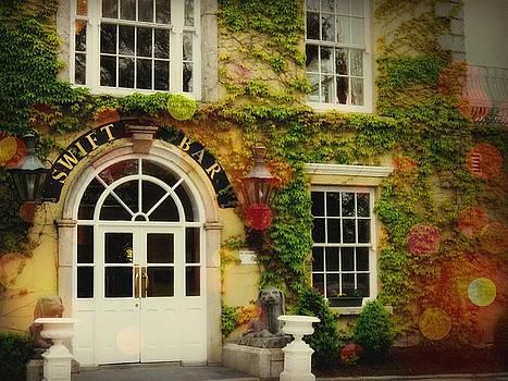 Swift Bar in Dublin Ireland by Robin Regan