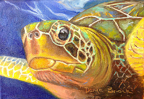 Swim Free by Darla Brock