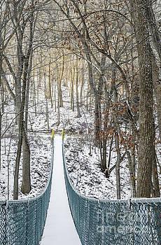 Swinging Bridge In Winter by Tamara Becker