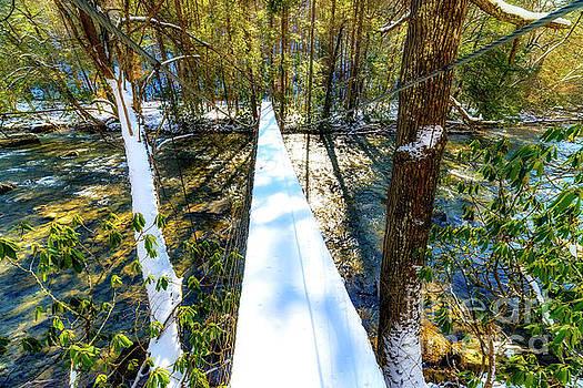 Swinging Bridge by Thomas R Fletcher