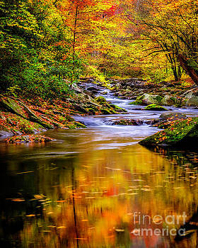 Swirling Reflections Of Fall Colors by Madonna Martin