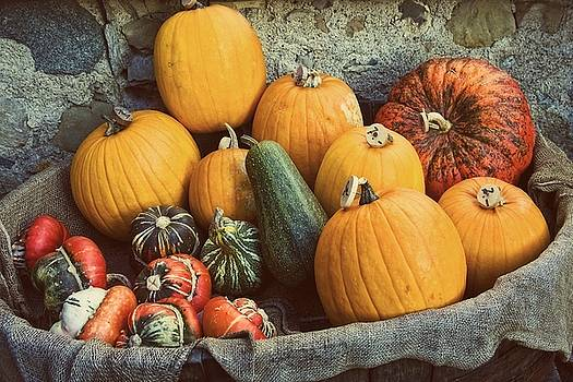 Swiss Pumpkins by Dania Reichmuth