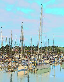 Sidney Pleasure Boat Harbor British Columbia Canada Drawing by Barbara Snyder