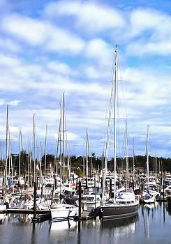 Sidney Pleasure Boat Harbor British Columbia Canada Painting by Barbara Snyder