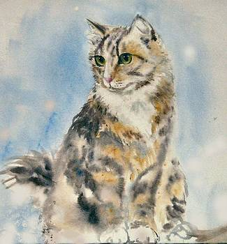 Tabby Cat by Frances Gillotti