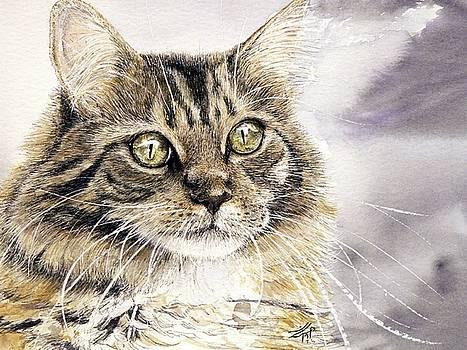 Tabby Cat Jellybean by Keran Sunaski Gilmore