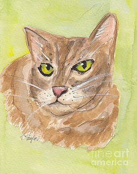 Tabby with Attitude by Terry Taylor