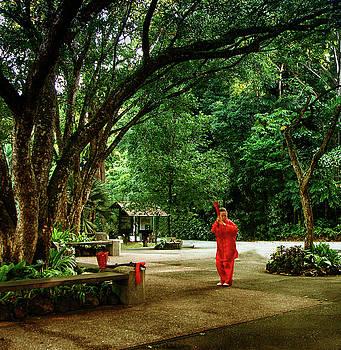 Tai Chi Lady Singapore by Joseph Hollingsworth