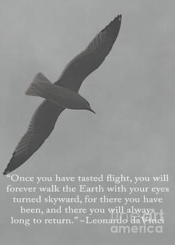 Tasted Flight by Mim White