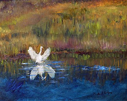Taking Flight by Michael Helfen