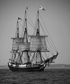 Tall Ship in Black and White by Peggie Strachan