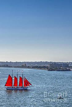David  Zanzinger - Tall Ship Red Sails