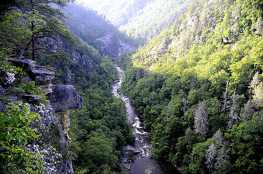 Tallulah Gorge by Charles Bacon Jr