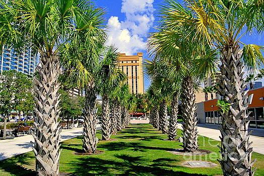 Tampa by Elfriede Fulda