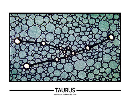 Taurus by Timothy Benz
