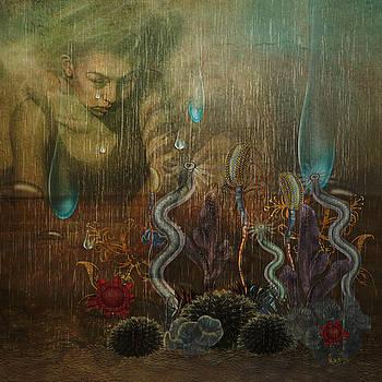 Tears For My Garden by Terry Fleckney