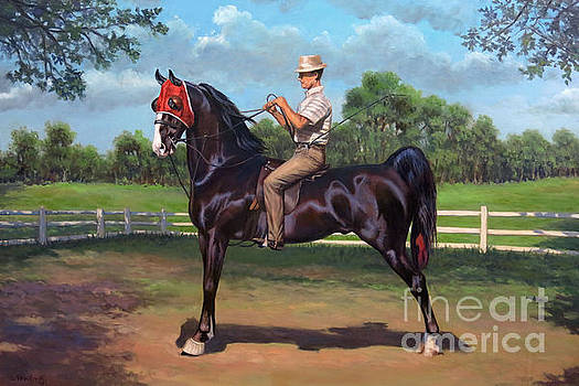 Ted Macklin and Sunset Commander by Jeanne Newton Schoborg