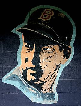 Ted Williams by Ralph LeCompte