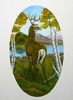 Teddy's Deer by Sheri Keith