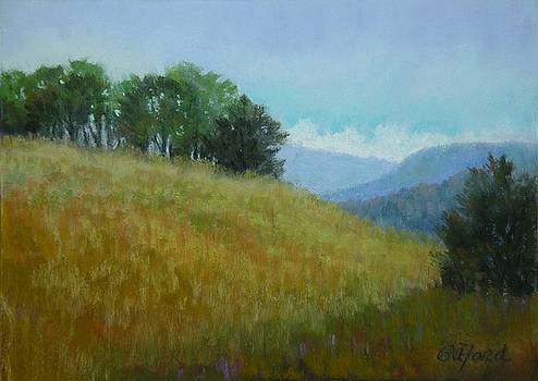 Tennessee Field View by Paula Ann Ford
