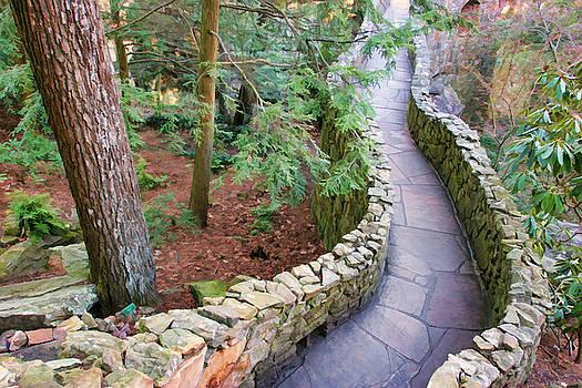 Tennessee Mountain Path by Paul Bartoszek