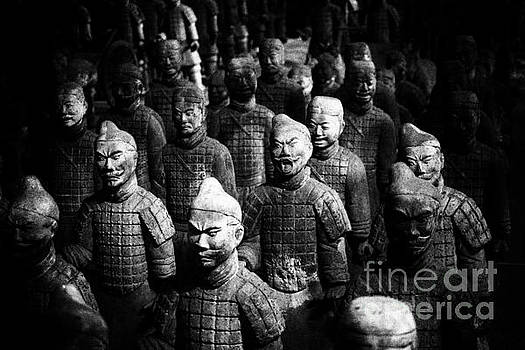 Darcy Michaelchuk - Terra Cotta Army Abstract