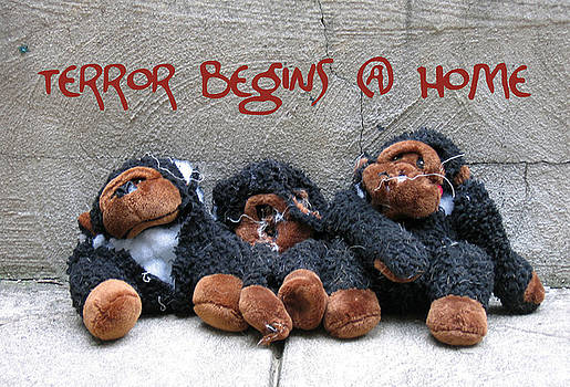 Terror Begins at Home by Anne Cecil
