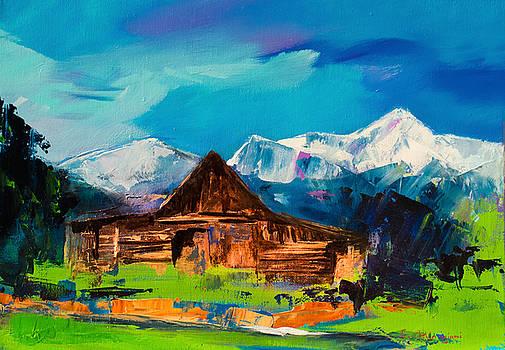 Teton Barn  by Elise Palmigiani