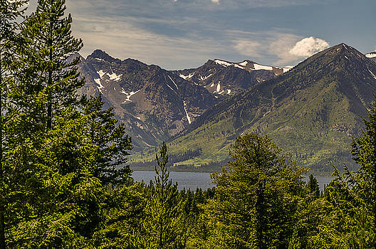 Tetons Landscape by Sue Smith