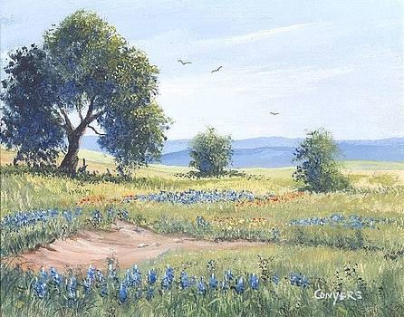 Texas Bluebonnet pasture by Peggy Conyers