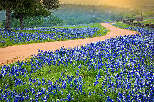 Texas Country Road by Inge Johnsson