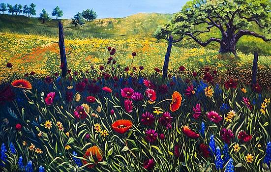 Texas Hill Country  by Patricia Reed