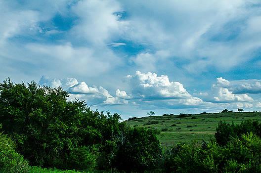 Texas Landscape by Bob Marquis