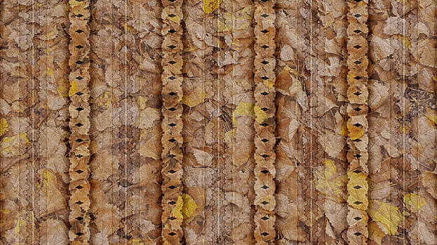 Textured Leaves by Susan Kinney