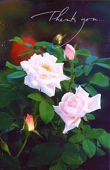 Anne-elizabeth Whiteway - Thank You Card enhanced